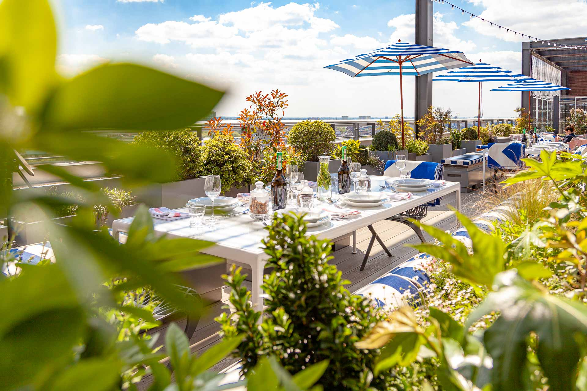 Skylark Roof Garden, Rooftop Cocktail Bar and Restaurant in Paddington West London W2